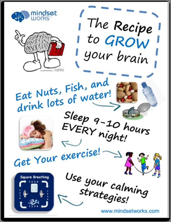 brainology poster 1